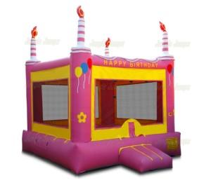 Pink Birthday Cake 13x13x15 $190.00