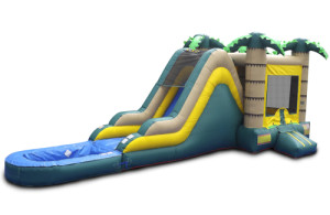 High Slide Safari with Pool 11x34X15 $350.00