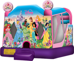 Disney Princess Combo 20x15x15 $275.00