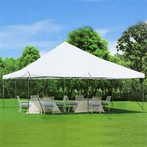 20x20 Pole Tent $200